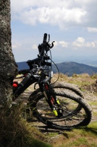Hit the Trails: Mountain Biking for Beginners