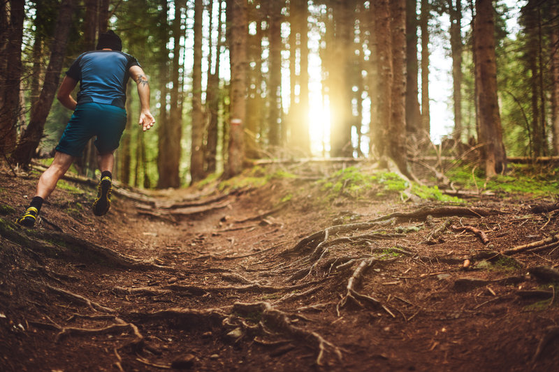 A man exercise trail running in a green forest
