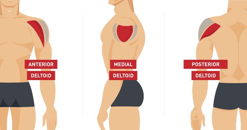 Ejercicios con el propio peso para hombros >> Los 5 mejores