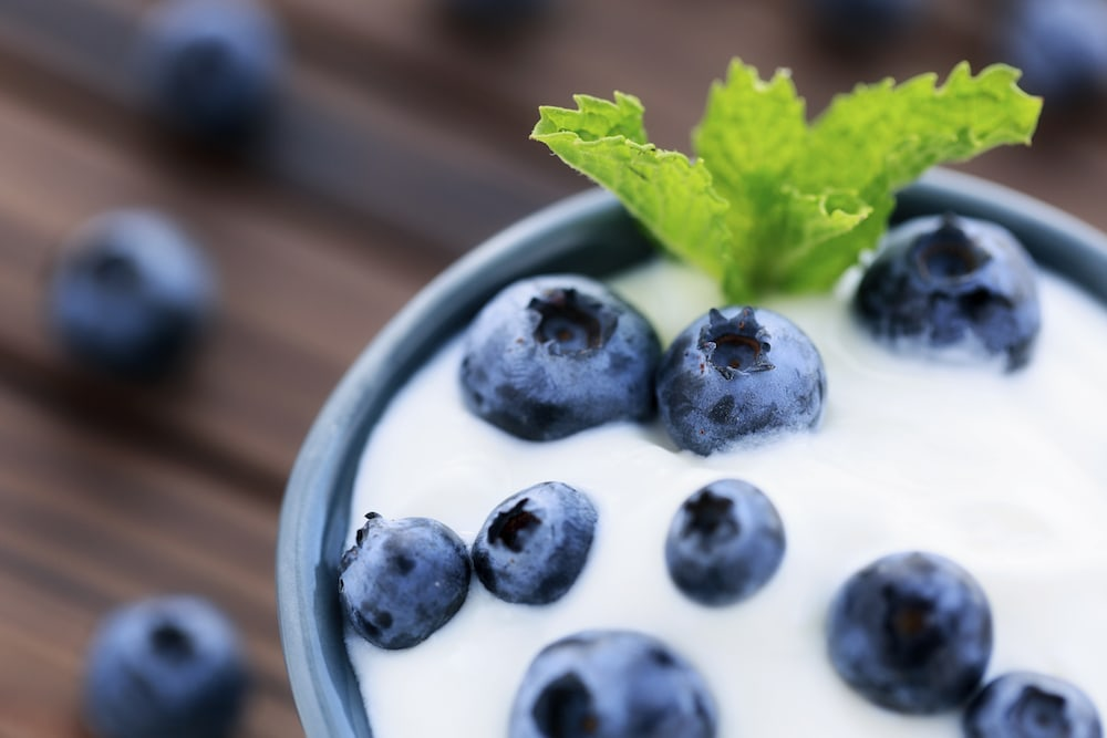 Bowl with blueberries and yoghurt