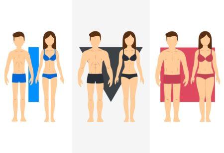 Body type training