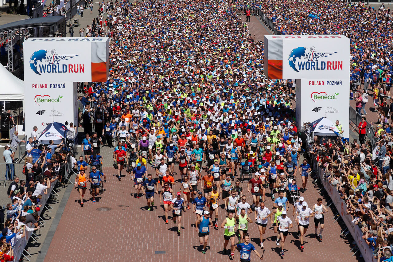 Wings for Life World Run in Poland