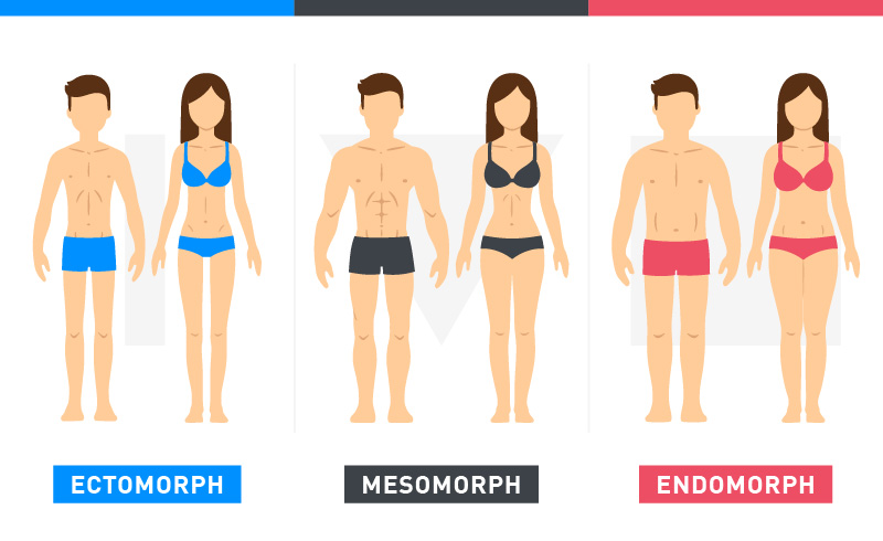 Image result for genetic body types women