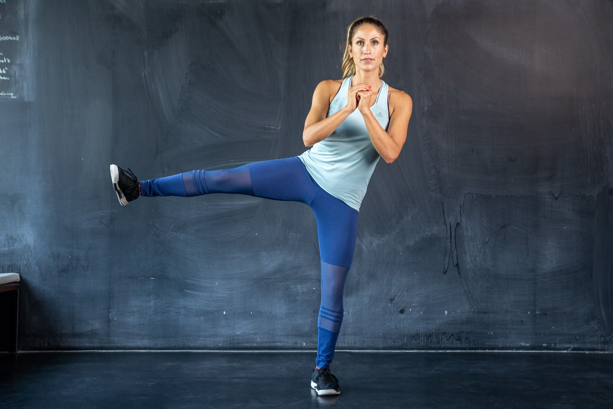 Image result for Combination of squat and side kicks