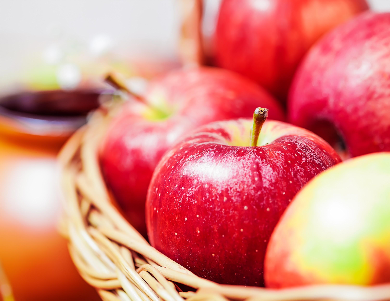 Runtastic Nutrition