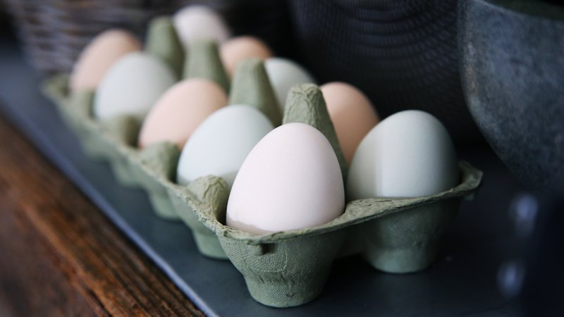 A tray full of eggs