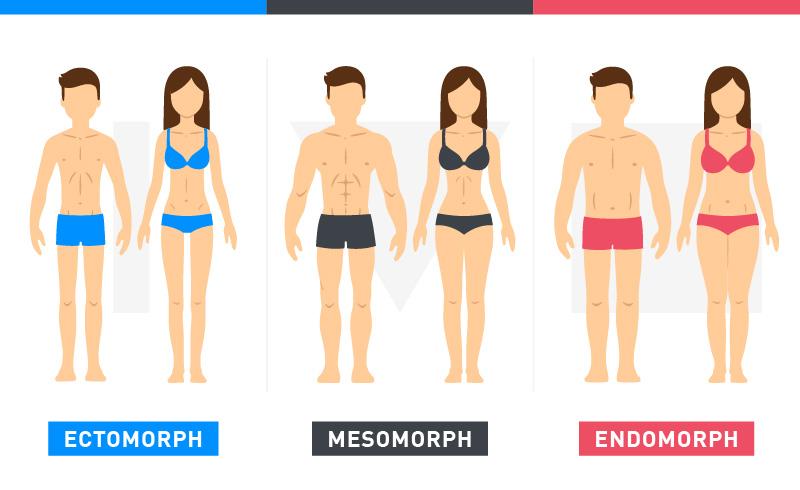 Diet plan for mesomorph female