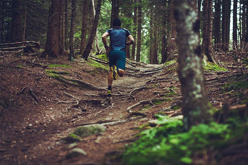 Course en forêt