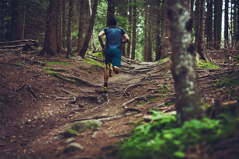 Ein Mann läuft im Wald
