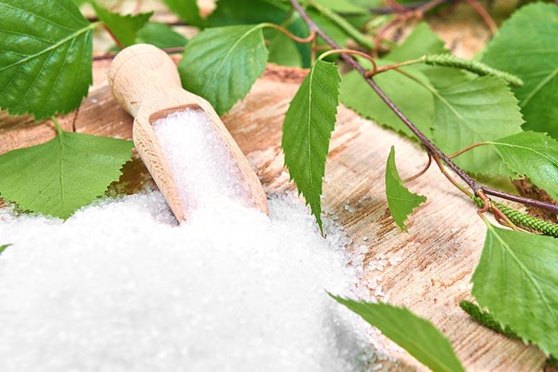Açúcar cristal sobre mesa em madeira e plantas