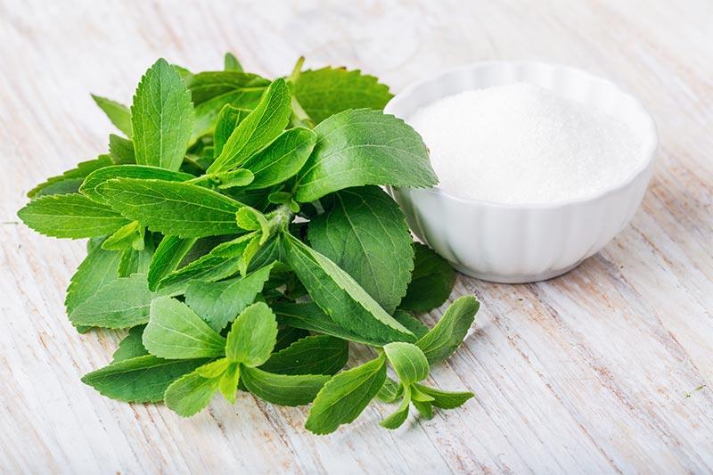 Pote com stevia em pó e, ao lado, folhas da planta stevia