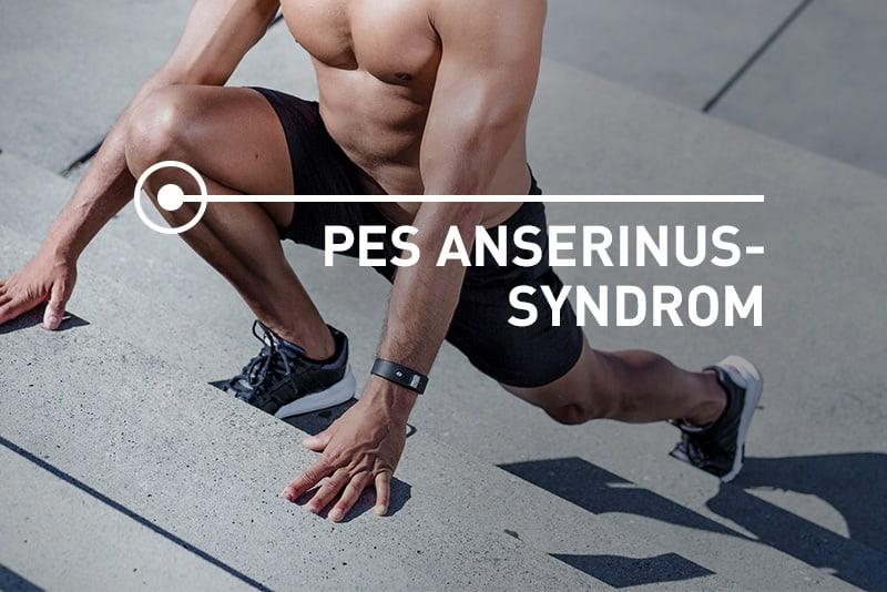 Pes anserinus Syndrom an der Innenseite des Unterschenkels