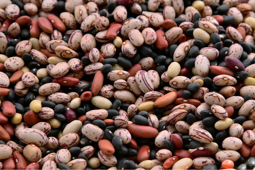Vegan protein source: Lentils