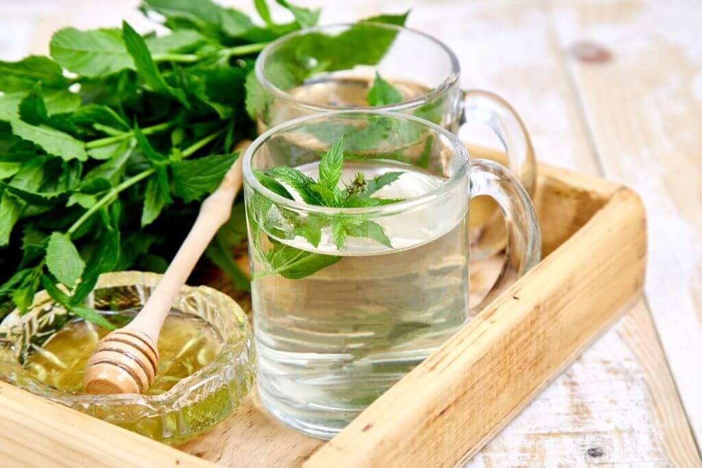 Remedios Naturales Contra El Estómago Inflamado