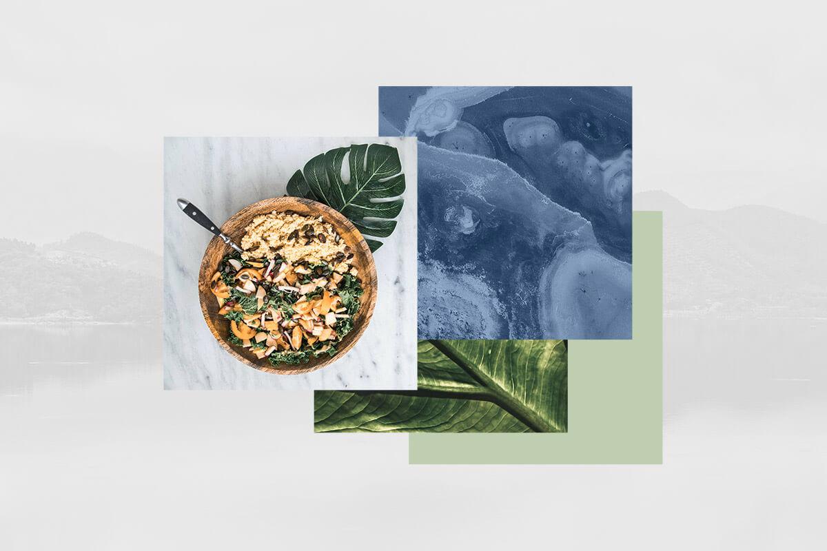 un repas équilibré est une approche holistique de la santé