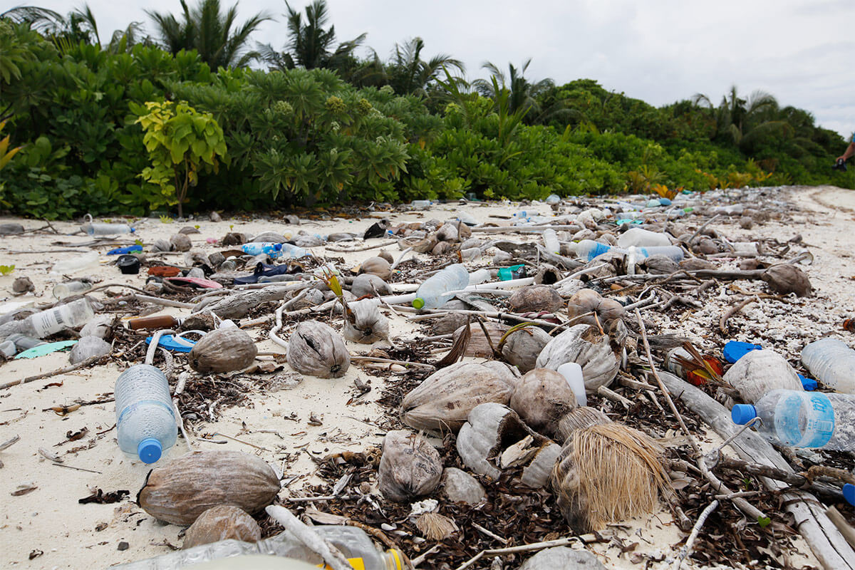 ocean beach full of plastic waste