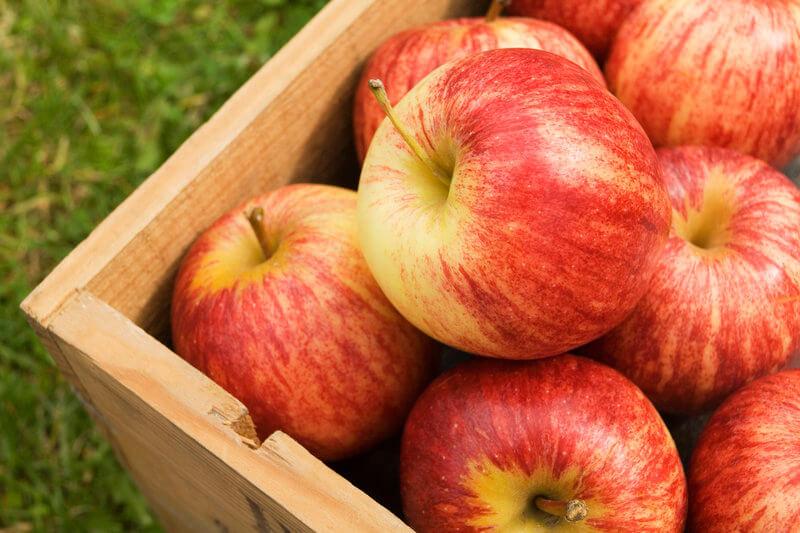 Le mele fanno bene al cuore