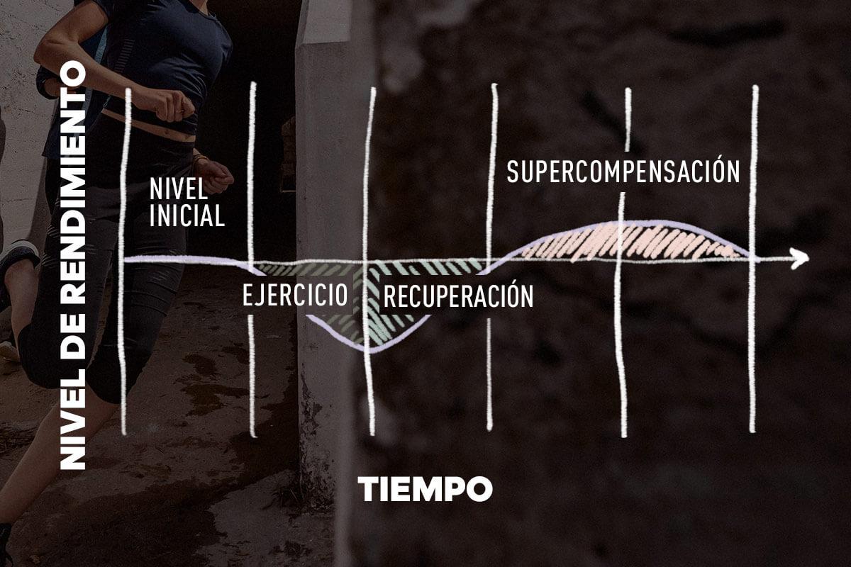 Diagrama de las fases de la supercompensación