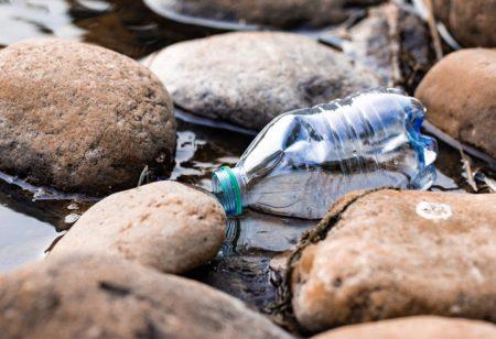 Une bouteille en plastique laissée dans la nature